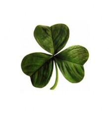 Feestdag van Ierland